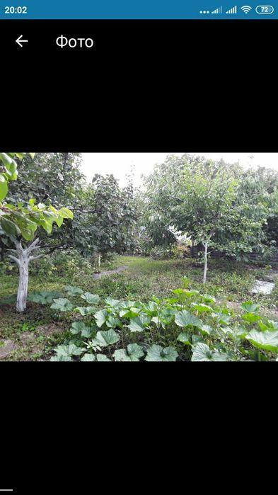 Продам участок в садовом товариществе