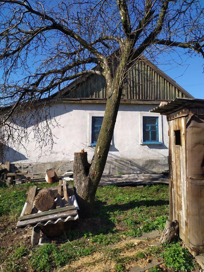 Продам дом ул. Пирогова р-н 74 магазин с большим огородом